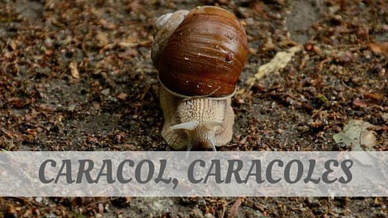 How Do You Pronounce Caracol, Caracoles?