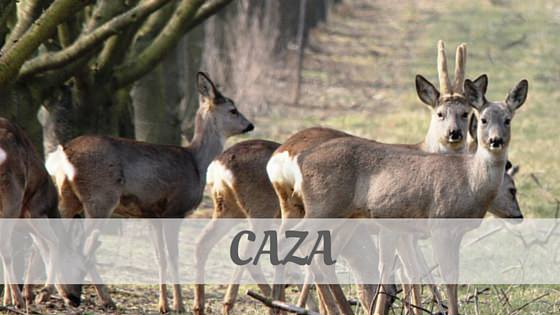 How To Say Caza