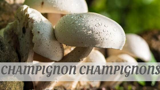 How Do You Pronounce How To Say Champignon, Champignons?