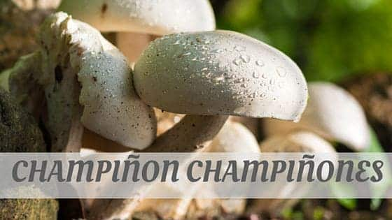 How To Say Champiñon