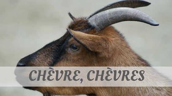 How To Say Chèvre, Chèvres?