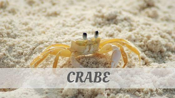 How Do You Pronounce Crabe?