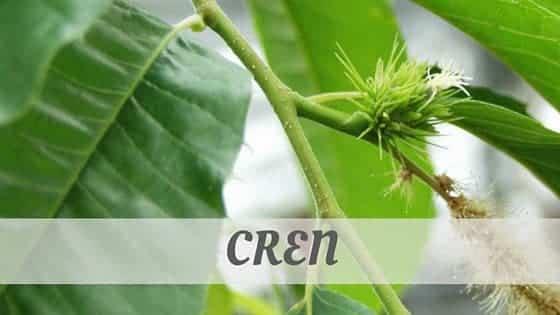 How Do You Pronounce Cren?