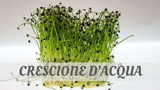 How To Say Crescione D'acqua?