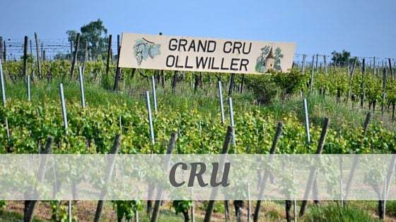 How To Say Cru