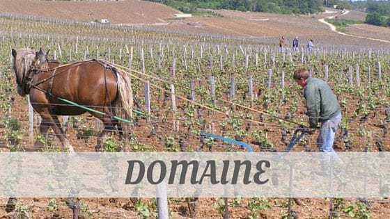 How To Say Domaine?