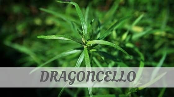 How Do You Pronounce Dragoncello?