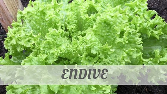 How Do You Pronounce How To Say Endive?