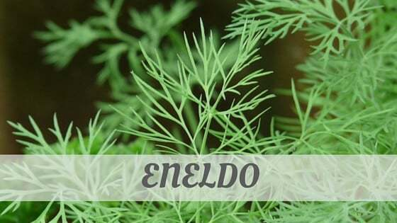 How To Say Eneldo
