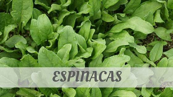 How Do You Pronounce How To Say Espinacas?