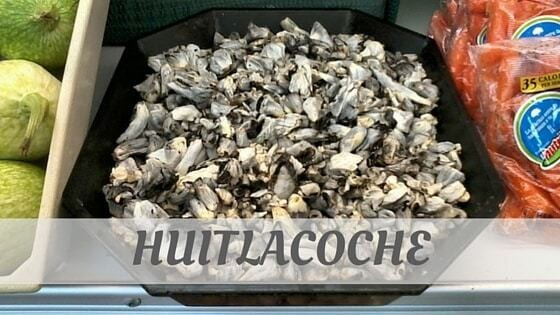 How To Say Huitlacoche