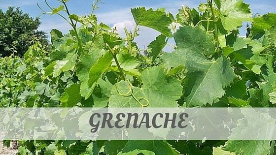 How To Say Grenache