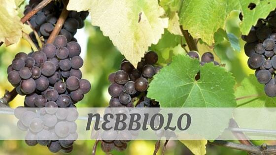 How To Say Nebbiolo