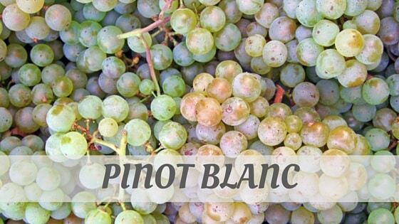 How Do You Pronounce How To Say Pinot Blanc?
