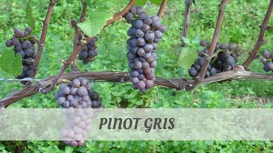 How To Say Pinot Gris