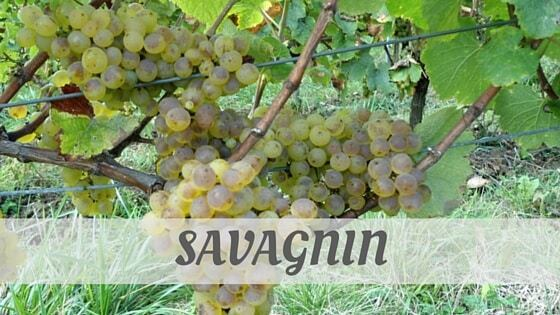 How Do You Pronounce Savagnin?