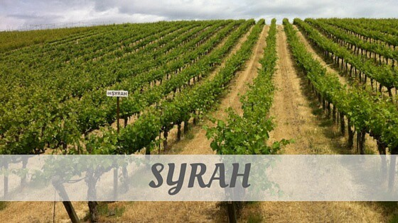 How Do You Pronounce Syrah?