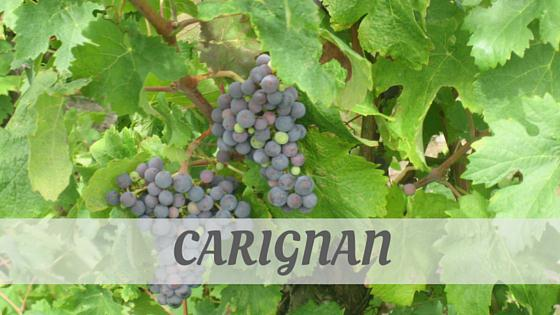 How Do You Pronounce How To Say Carignan?