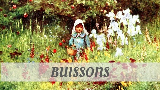 How To Say Buissons