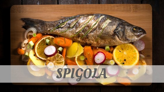 How Do You Pronounce Spigola?