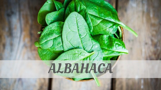 How To Say Albahaca