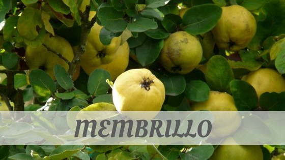 Membrillo Pronunciation