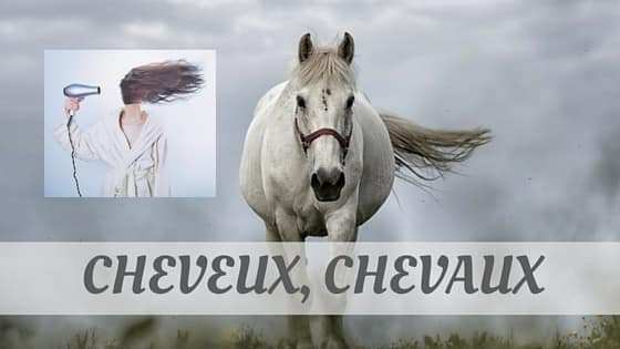 How To Say Cheveux
